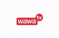 CW24 TV Live