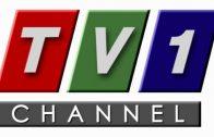 TV1 Chanel Live